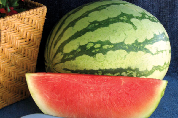 Pee Dee Sweet F1 Hybrid Triploid Watermelon Seeds